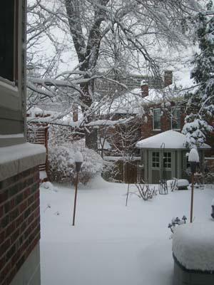snowfeb7-3.jpg