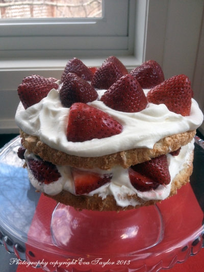 Strawberry Shortcake_4489