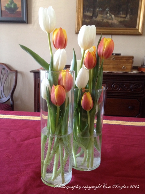 I found this clever idea in the latest LCBO magazine. My vases were a little smaller than the idea in the magazine so some of my tulips had to stick out at the top.