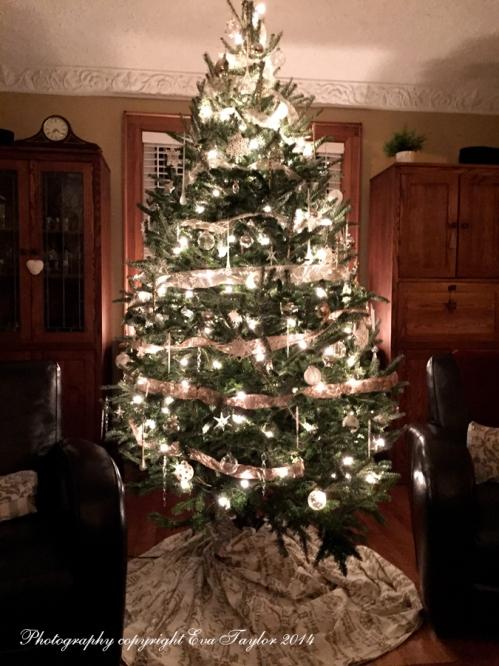 ChristmasTree_4226