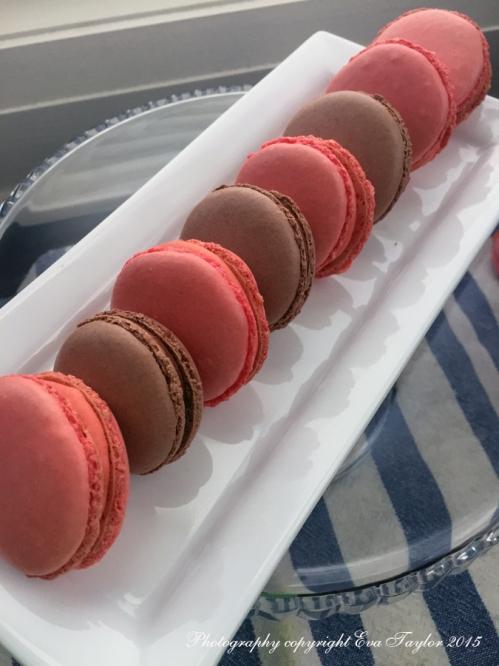 Macarons_1