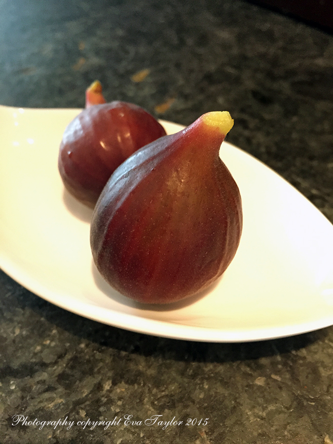 TheFirstFigs_1