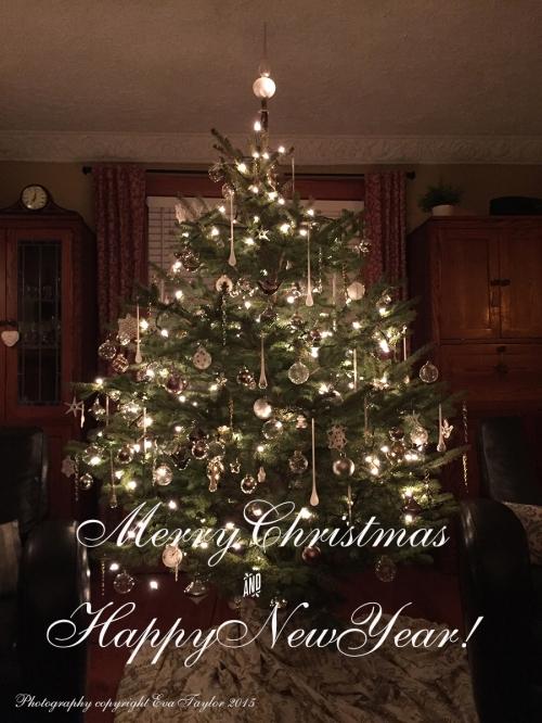 MerryChristmasHNY